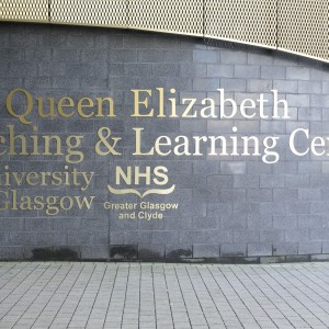 Flat Cut Anodised Gold Text. Fixed with stud fixings to Block Wall Queen Elizabeth University Hospital Signage